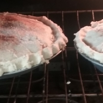 Fresh Fruit Pies